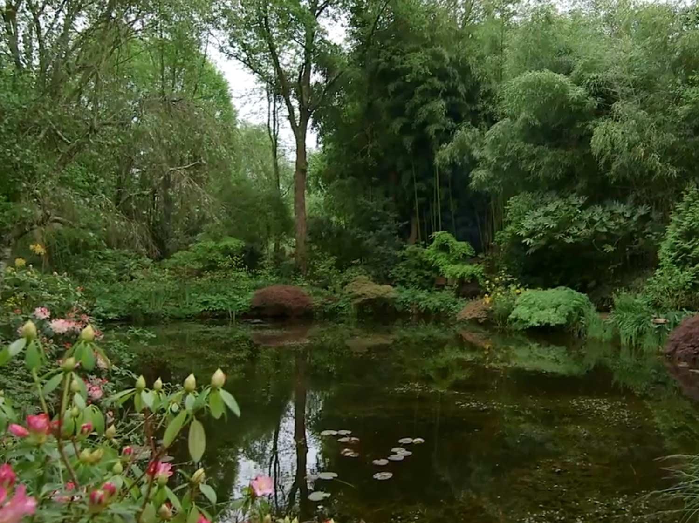 Visite : un jardin comme des tableaux