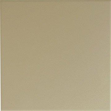 Faïence mur gris doré n°5, Astuce l.20 x L.20 cm