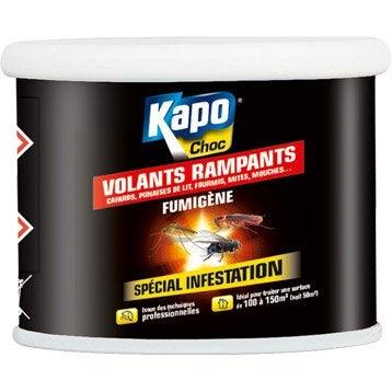 Fumigène insecticide pour tous insectes KAPO, 37.5 g