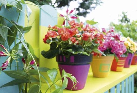 Un balcon coloré avec des pots fleuris en terre cuite