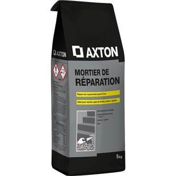 Mortier de réparation poudre gris AXTON, 5 kg