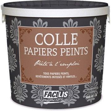 Colle tous papiers peints Prête à l'emploi, 1 kg