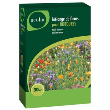 graines de fleurs au meilleur prix leroy merlin. Black Bedroom Furniture Sets. Home Design Ideas