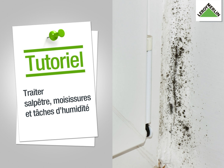 Nettoyer La Moisissure Sur Un Mur comment traiter les moisissures, le salpêtre et les tâches ? | leroy