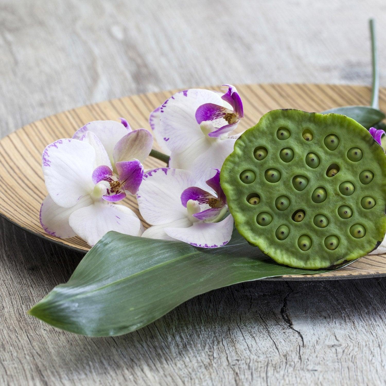Carrelage Autocollant Carrelage à coller bain et cuisine Set Blanc Orchidée Pierres