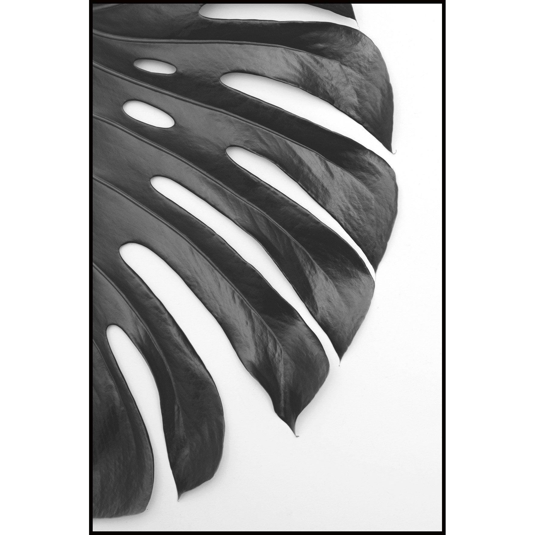 Image encadrée GROS PLAN ARTIS l.62.7 x H.92.2 cm