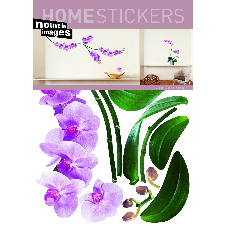orchidee 69