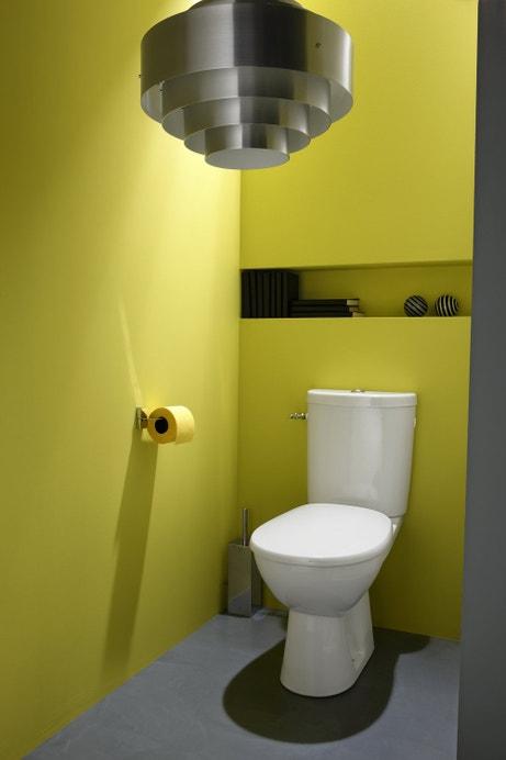 Un WC à poser avec le papier toilette assorti