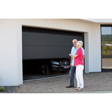 motorisation porte de garage a cha ne courroie leroy merlin. Black Bedroom Furniture Sets. Home Design Ideas