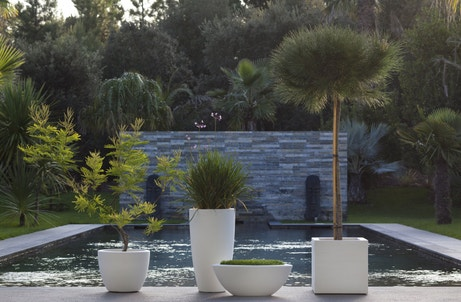 Un jardin avec un bassin au style japonais