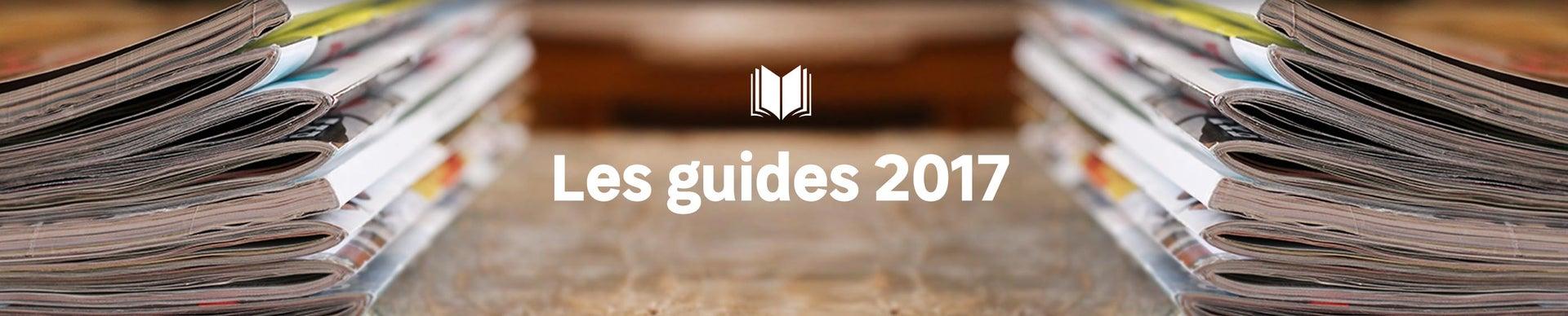 accueil guides 2017