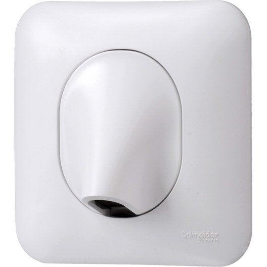 sortie de câble ovalis, blanc, schneider electric | leroy merlin