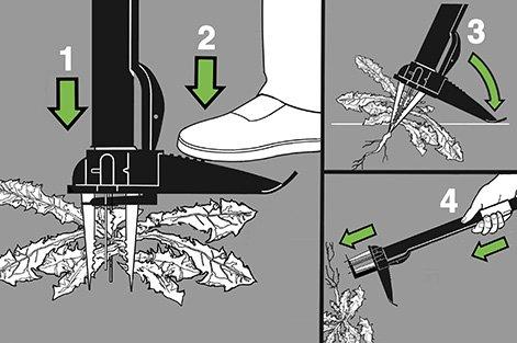 Comment éviter Les Mauvaises Herbes Leroy Merlin