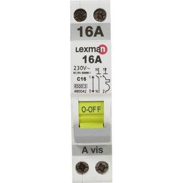 Disjoncteur phase + neutre LEXMAN 16 A