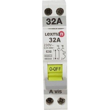 Disjoncteur phase + neutre LEXMAN 32 A
