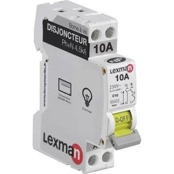 Disjoncteur phase + neutre LEXMAN 10 A
