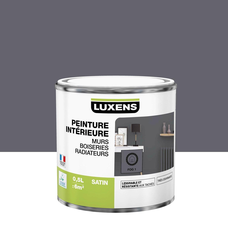 Peinture Multisupports fog 1 satin LUXENS 0.5 l