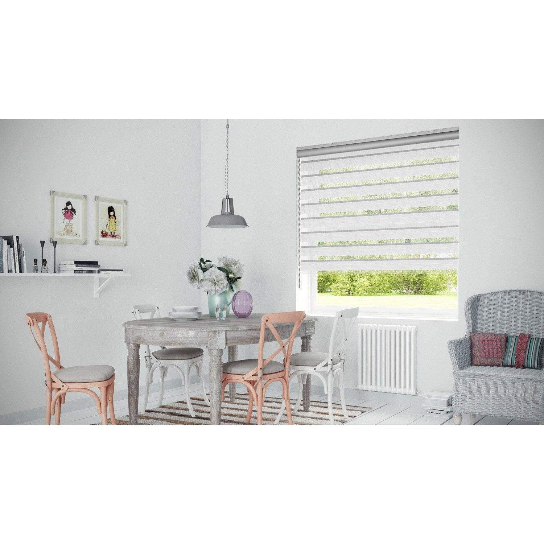 store enrouleur jour nuit coffre alu blanc gris 147. Black Bedroom Furniture Sets. Home Design Ideas