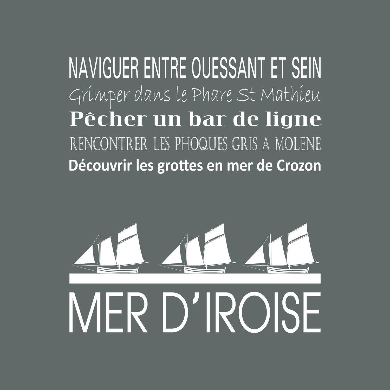 Toile imprimée MER D'IROISE, gris ARTIS l.30 x H.30 cm