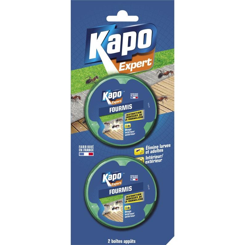 Boîte Insecticide Pour Fourmis Kapo 20 G