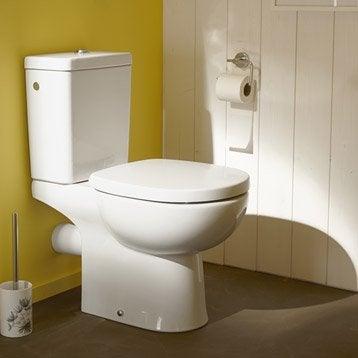 Wc poser wc abattant et lave mains toilette leroy for Quelle couleur pour un wc