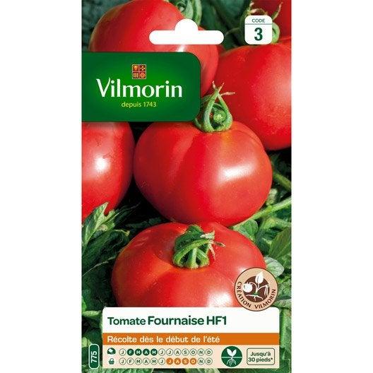 tomate fournaise hybride f1 vilmorin 0 3 g leroy merlin. Black Bedroom Furniture Sets. Home Design Ideas
