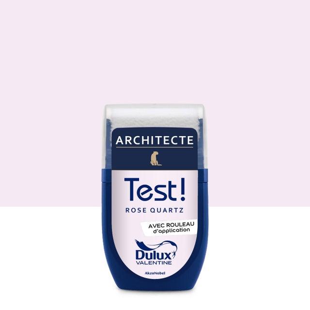 Testeur Peinture Rose Quartz Velours Dulux Valentine Architecte 003 L
