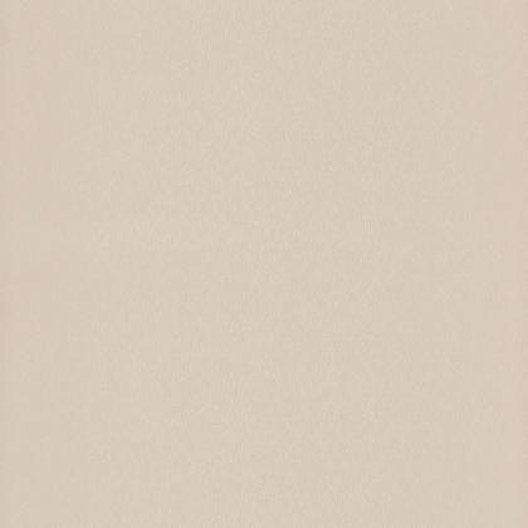 Papier peint eva taupe clair iris intiss trio leroy merlin for Papier peint couleur taupe clair