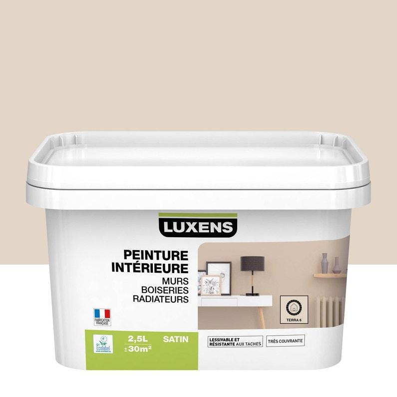 Peinture Mur Boiserie Radiateur Toutes Pièces Multisupports Luxens Terra 5 S