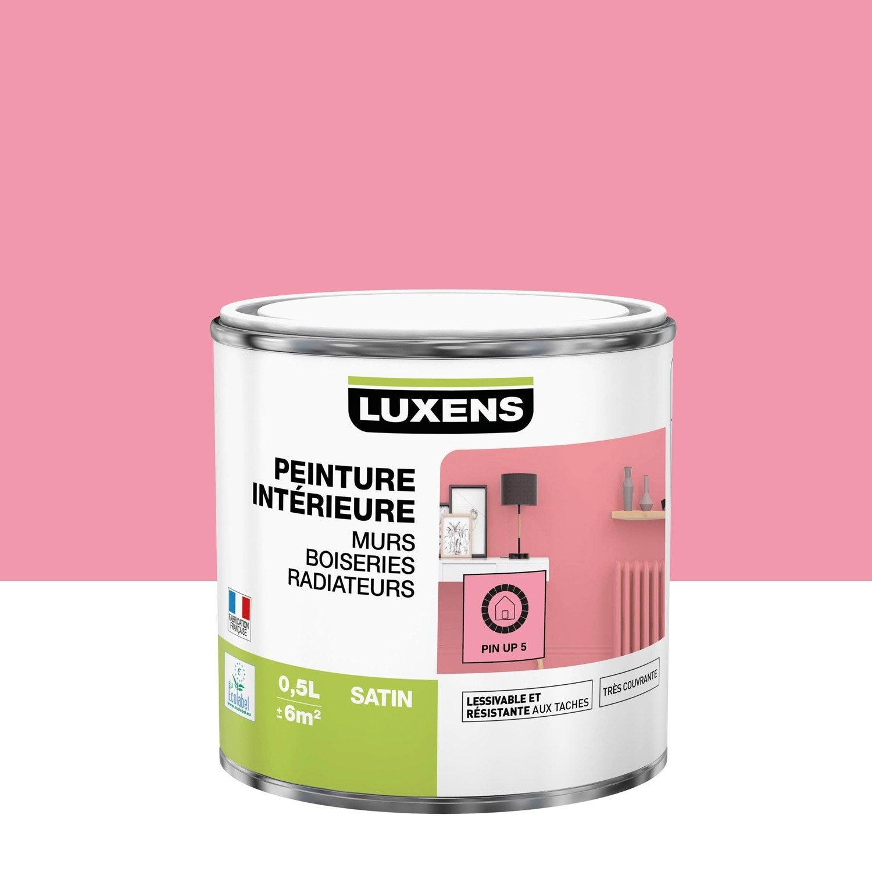 Peinture mur, boiserie, radiateur toutes pièces Multisupports LUXENS, pin up 5,