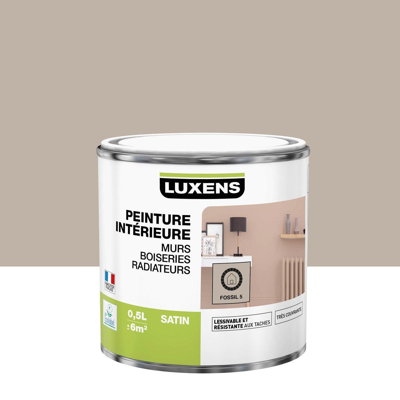 Peinture mur, boiserie, radiateur toutes pièces Multisupports LUXENS, fossil 5,