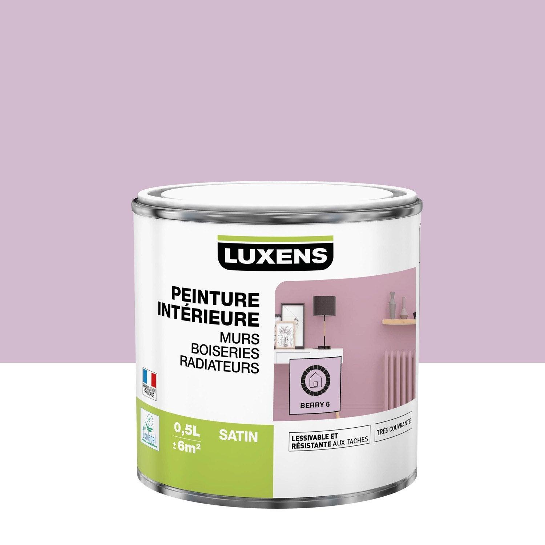 Peinture mur, boiserie, radiateur toutes pièces Multisupports LUXENS, berry 6, s