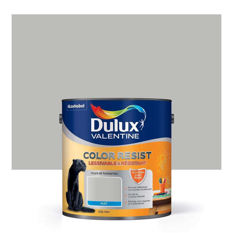 Peinture gris ciment mat DULUX VALENTINE Color resist 2.5 l | Leroy ...