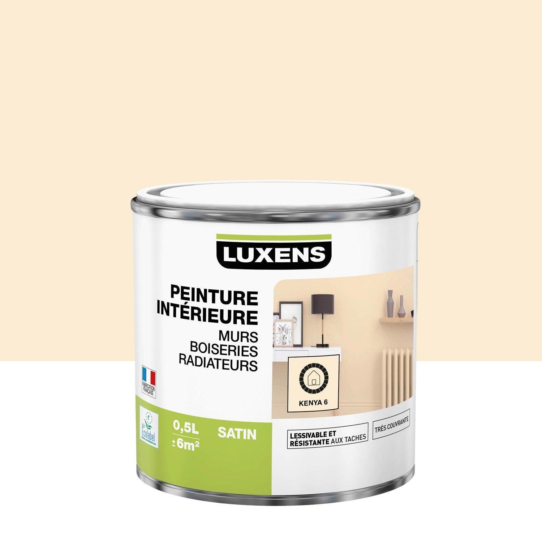Peinture mur, boiserie, radiateur toutes pièces Multisupports LUXENS, kenya 6, s