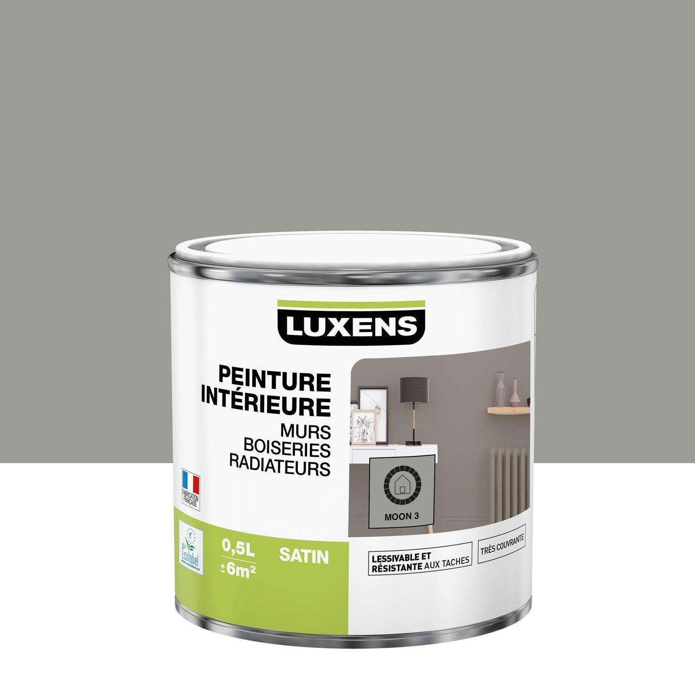 Peinture mur, boiserie, radiateur toutes pièces Multisupports LUXENS, moon 3, sa