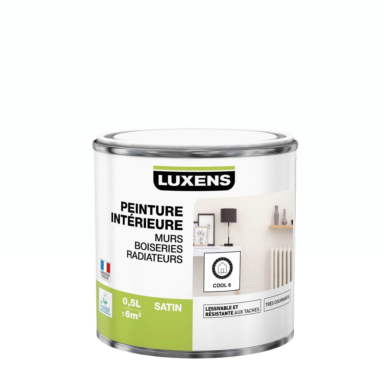Peinture mur, boiserie, radiateur toutes pièces Multisupports LUXENS, cool 6, sa