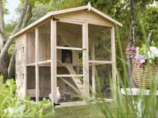 Créer un poulailler avec un toit végétal