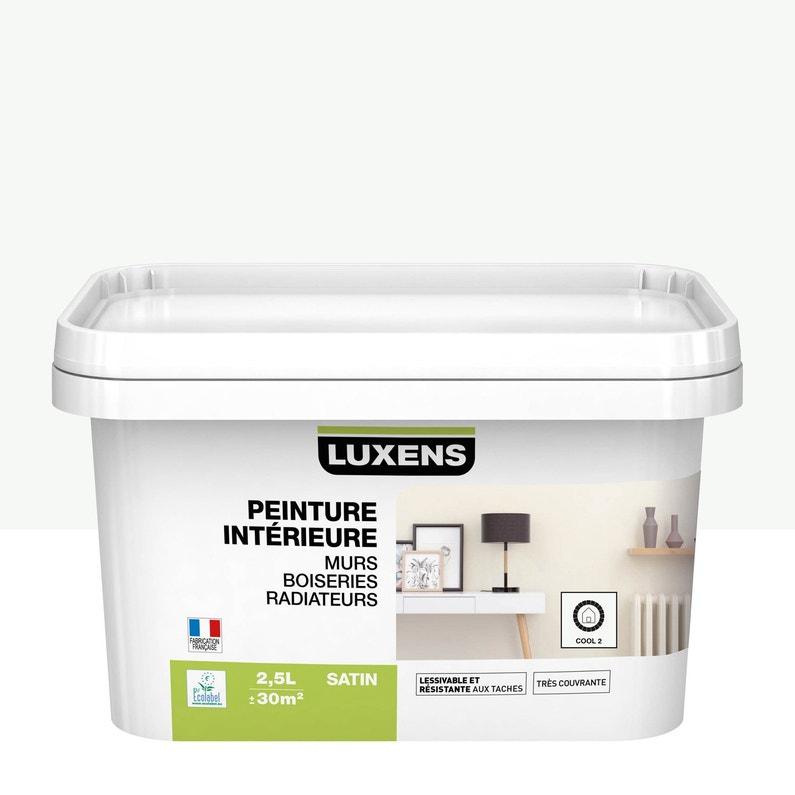 Peinture Mur Boiserie Radiateur Multisupports Luxens Cool 2 25