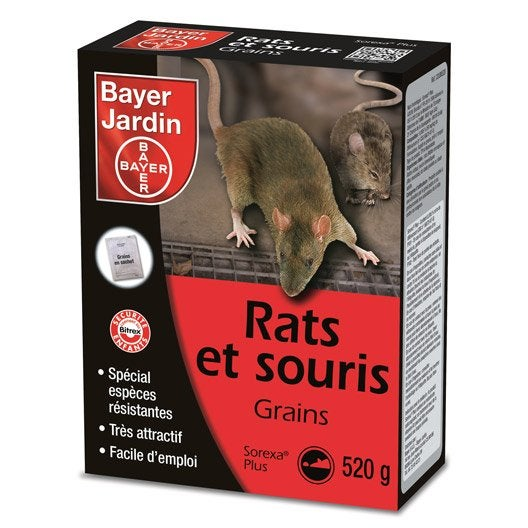 recharge antirats et souris bayer, 520 g | leroy merlin