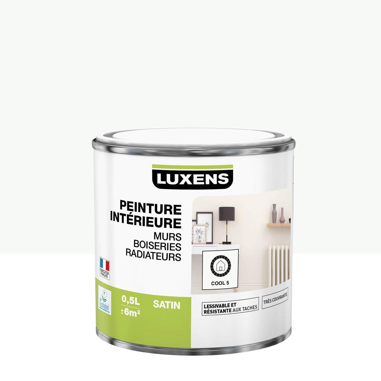 Peinture mur, boiserie, radiateur Multisupports LUXENS, cool 5, 0.5 l, satin