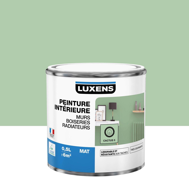 Peinture mur, boiserie, radiateur toutes pièces Multisupports LUXENS, cactus 5,