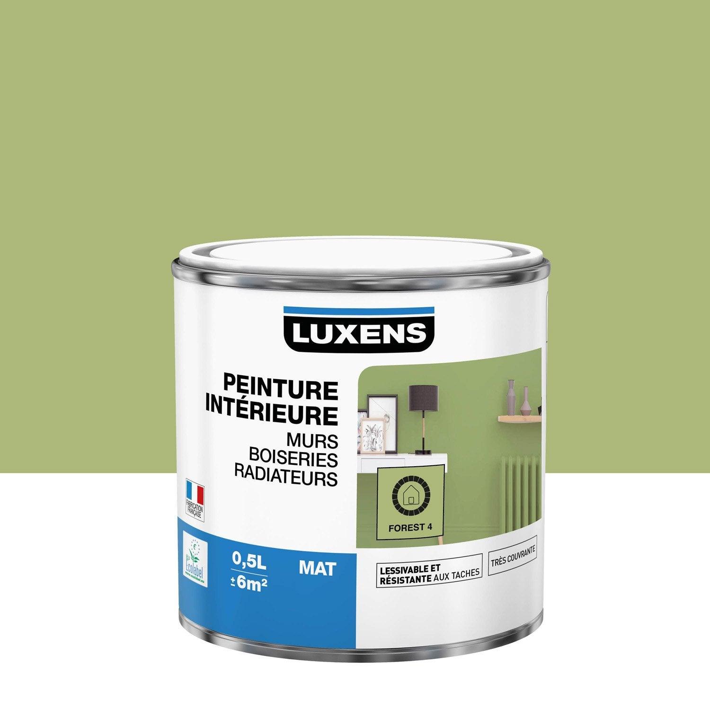 Peinture mur, boiserie, radiateur toutes pièces Multisupports LUXENS, forest 4,