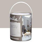 Peinture gris smart LUXENS Envie collection jazzy 2.5 l