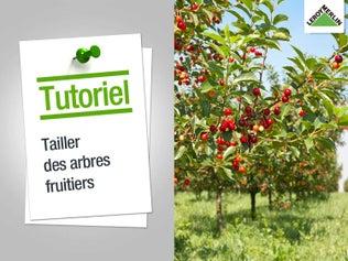 Bien choisir son garage ou son carport leroy merlin - Tailler les arbres fruitiers ...