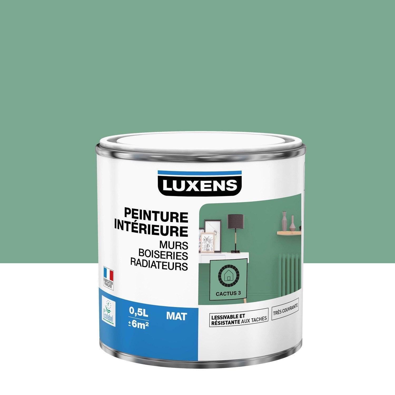 Peinture mur, boiserie, radiateur toutes pièces Multisupports LUXENS, cactus 3,