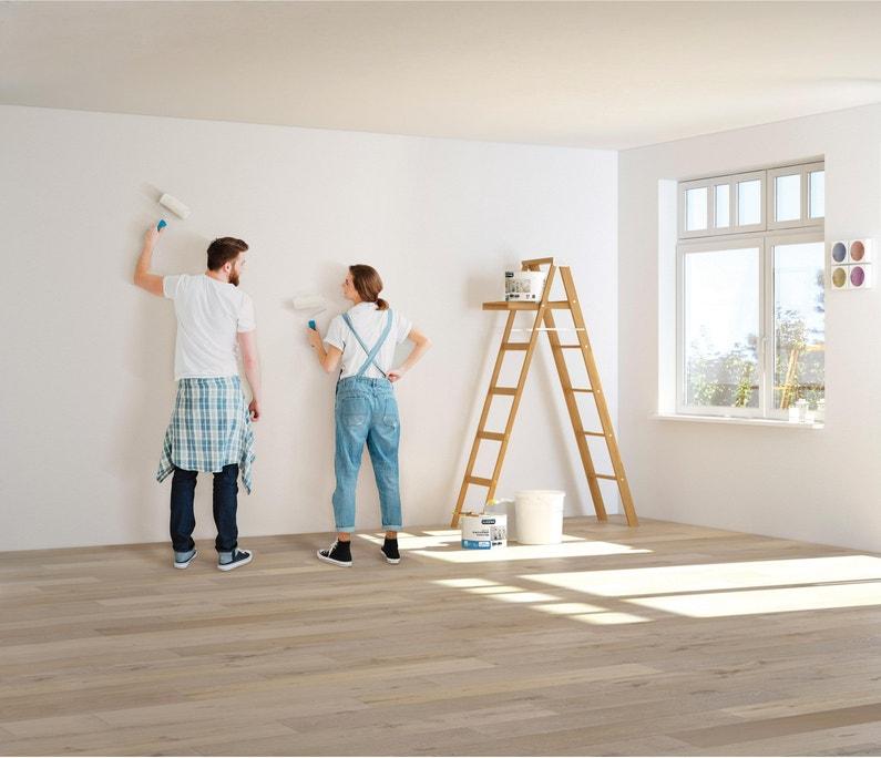 Peinture Luxens Mur Blanc Mat 5 L