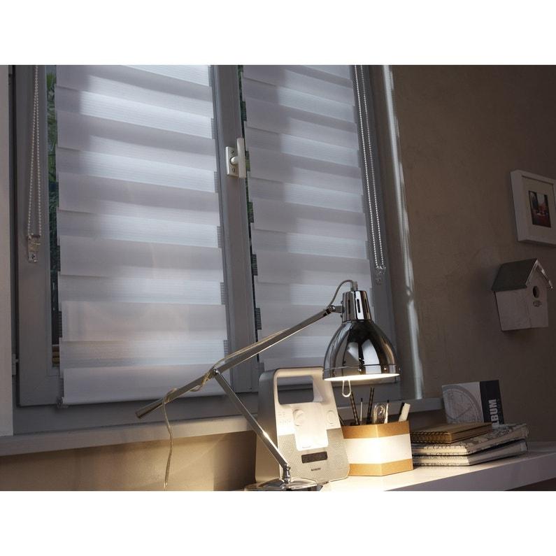 Store Enrouleur Jour Nuit Blanc Ontario L55 X 160 Cm