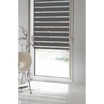 Store enrouleur jour / nuit INSPIRE, gris galet n°1, 77/81 x 190 cm