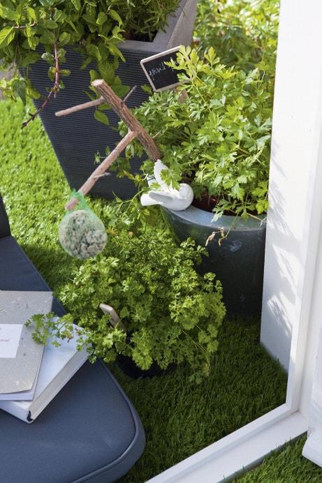 Les plantes foisonnent sur le balcon
