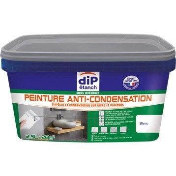 Peinture anti-condensation, DIP blanc 2.5 l